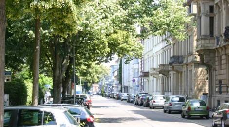 Warum sind Stadtbäume wichtig?